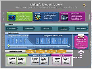 Mzinga Strategy