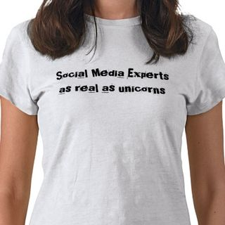 Social_media_experts_as_real_as_unicorns_tshirt-p235421643853038531q08p_400