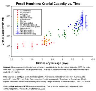 Fossil_hominin_cranial_capacity_lg_v1-1